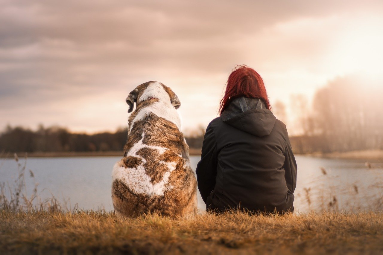 why pets are better than people - cptsd foundation guest blog