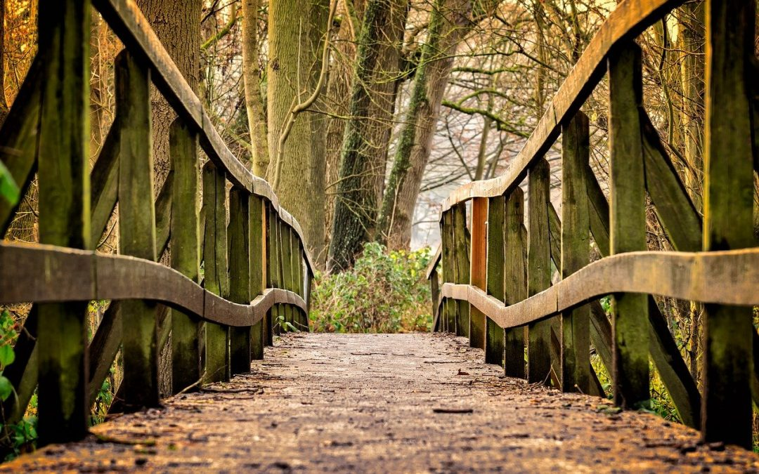 The Bridge Within: A Story of Self-Healing Part I