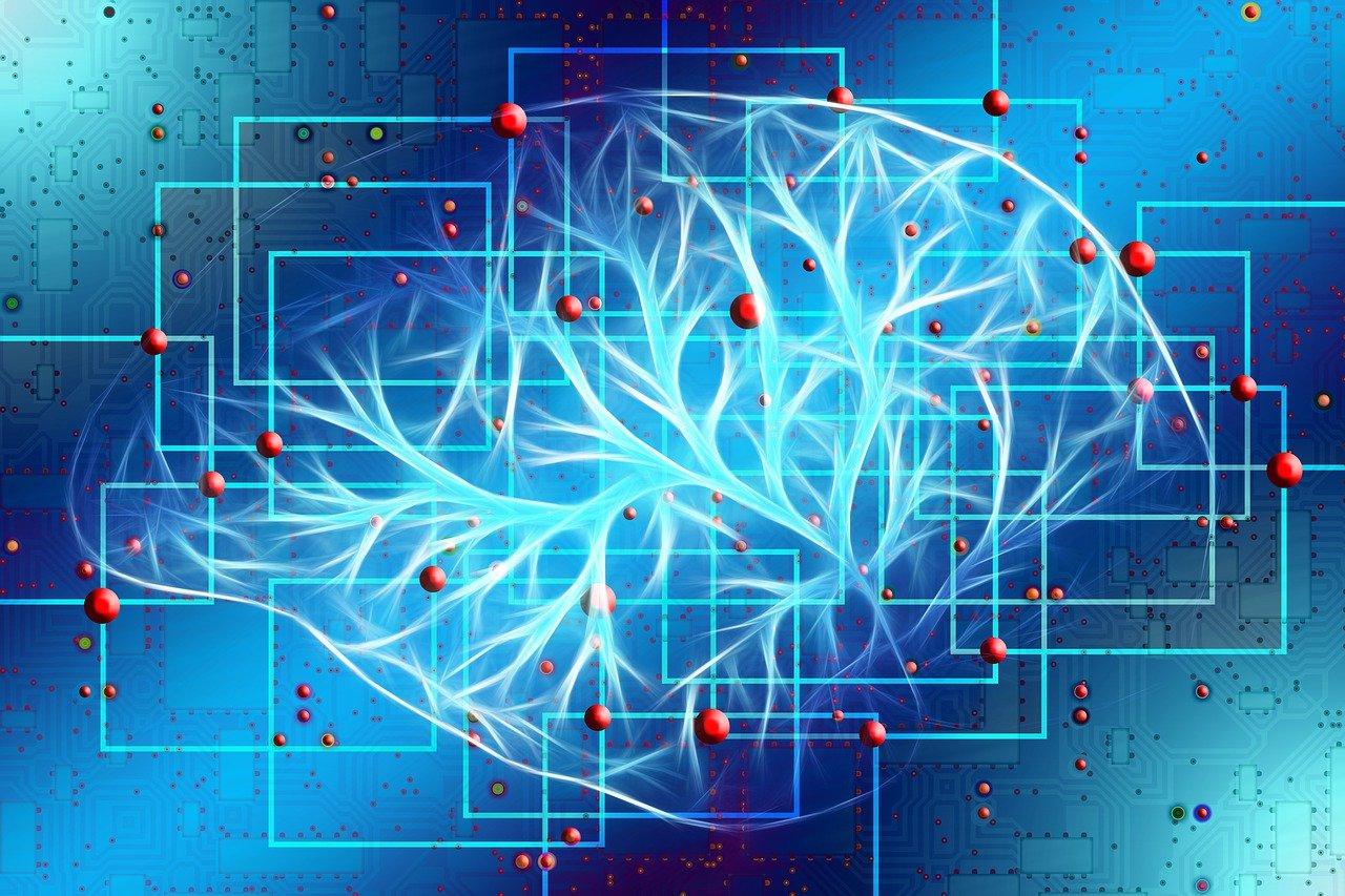 neurobiology of trauma - cptsd foundation